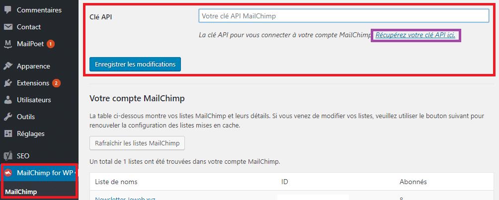 Enregistrer la clé API dans le plugin MailChimp